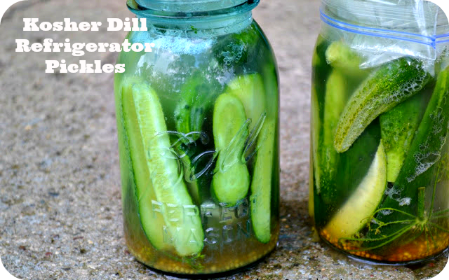 Homemade Kosher Dill Pickles Recipes — Dishmaps
